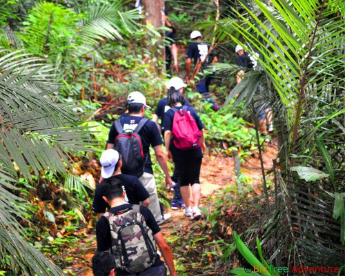 Taman-Negara-Jungle-Trekking-and-Lata-Berkoh-Tour-2-500x400